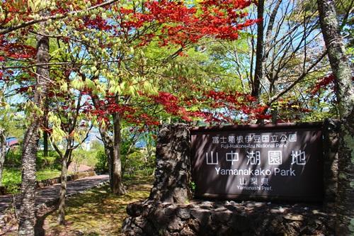 旭ヶ丘公園7