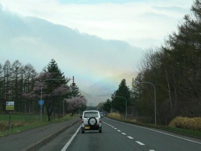 道路沿いに桜、正面に虹!
