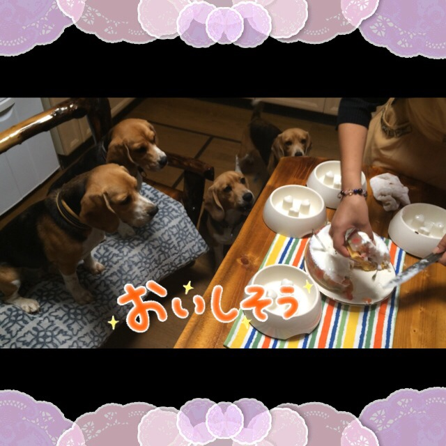 fc2blog_20140804180805a67.jpg