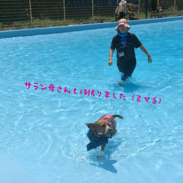 fc2blog_20140804183042992.jpg