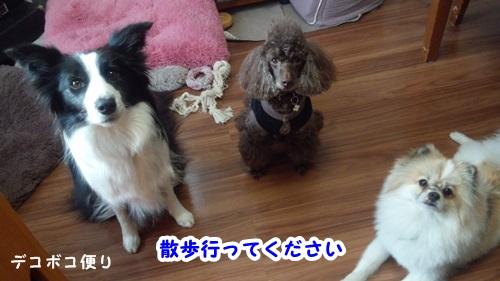 心ポカポカ3