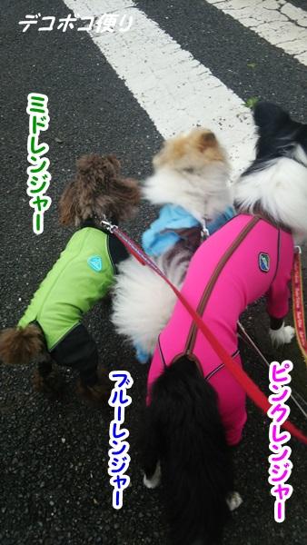 目が覚めるレンジャー部隊4
