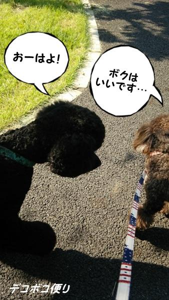 20140731朝散歩7