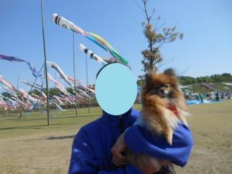 幕張ペット博・太田芝桜 025