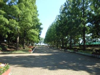おやつと草加公園 018