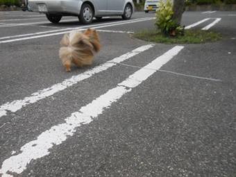 台風接近 4