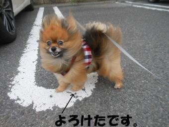 台風接近 5