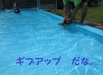 ひぬまドックプール 7