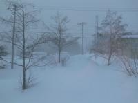 吹雪3月6日