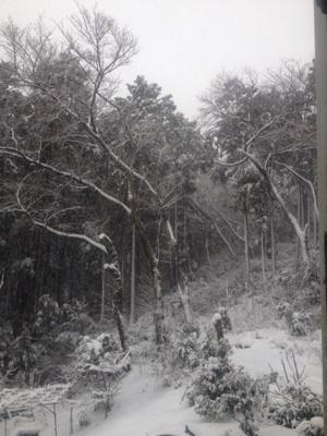1こ雪景色