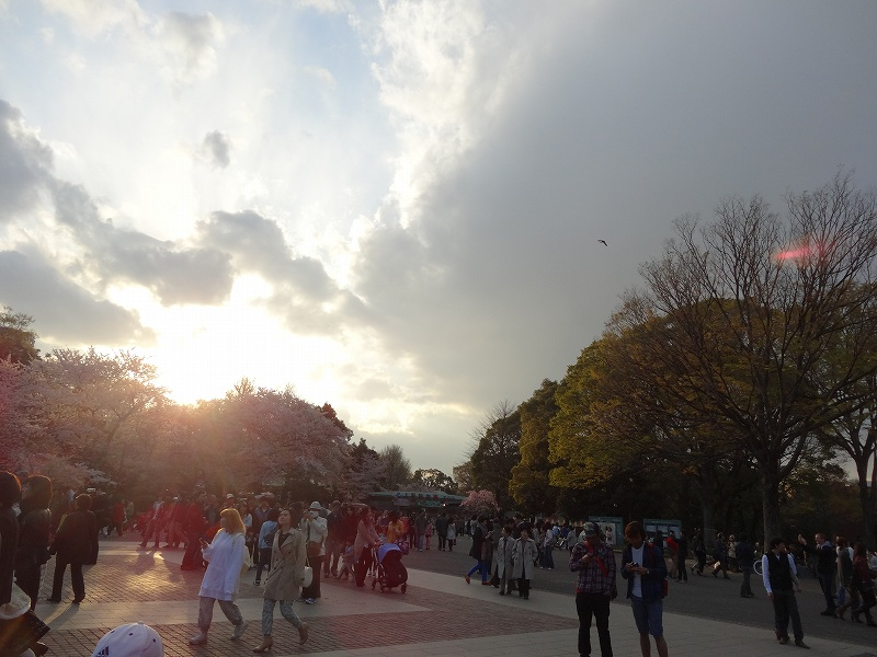 20140410_16.jpg