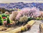 春の高麗郷
