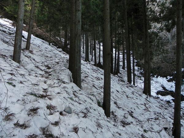 A015-2雪道