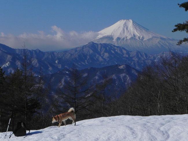 A015-14富士