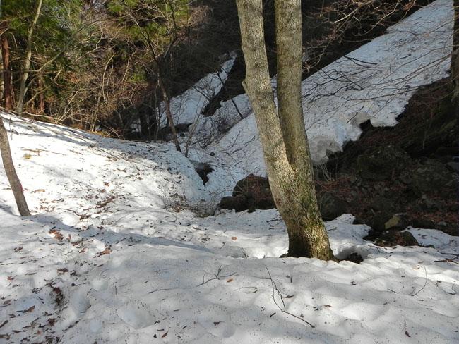 A017-11残雪