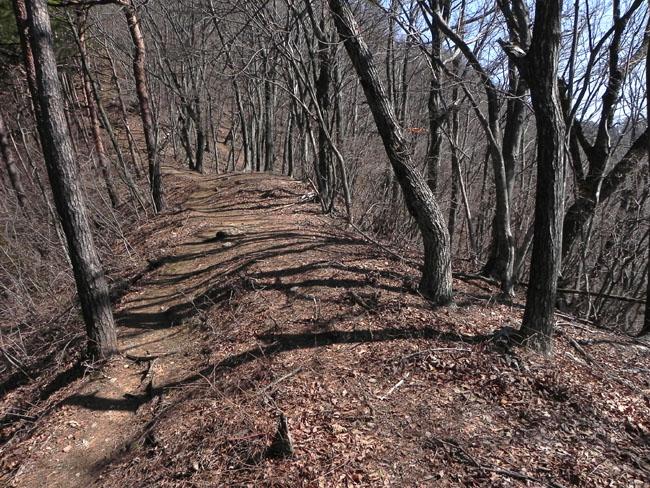 A017-18山道