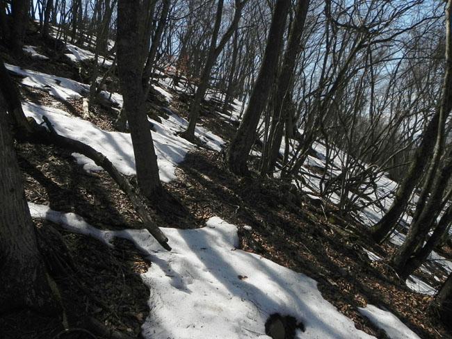 A017-34残雪