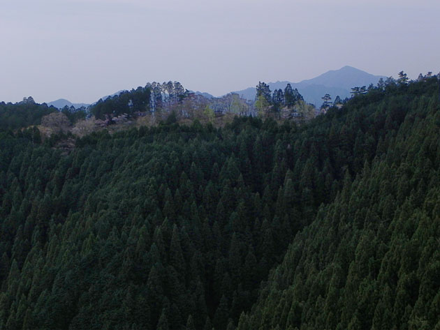 A020-14大山方面