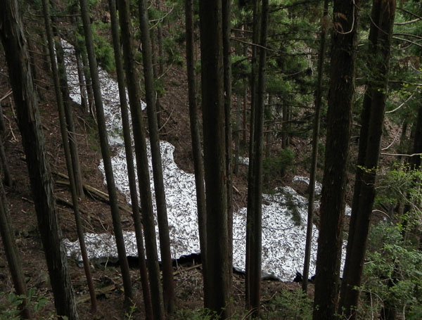 A023-1残雪