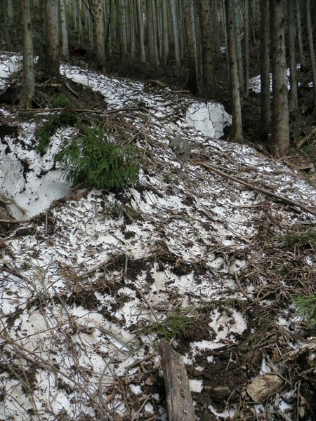 A023-2残雪