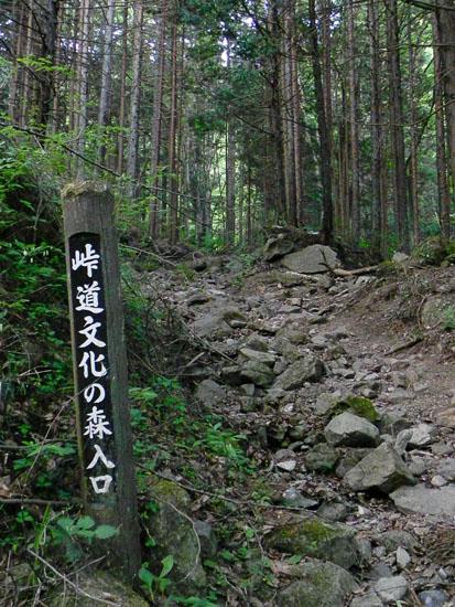 A028-7峠道