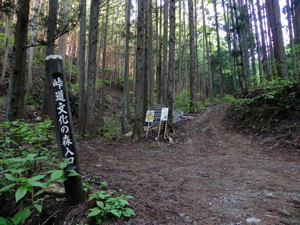 A028-16峠道
