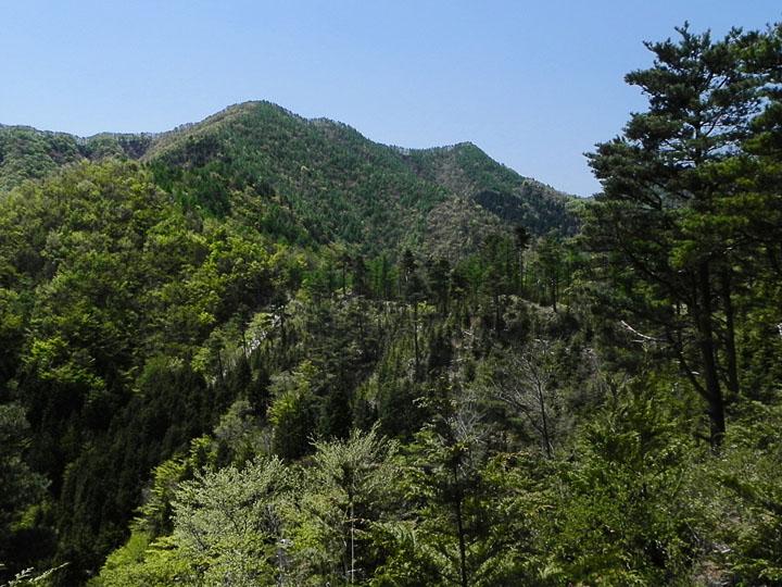 A028-33赤鞍ヶ岳