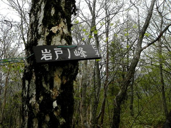 A028-43岩戸ノ峰