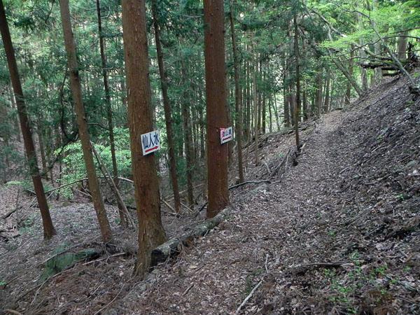 A028-86山道