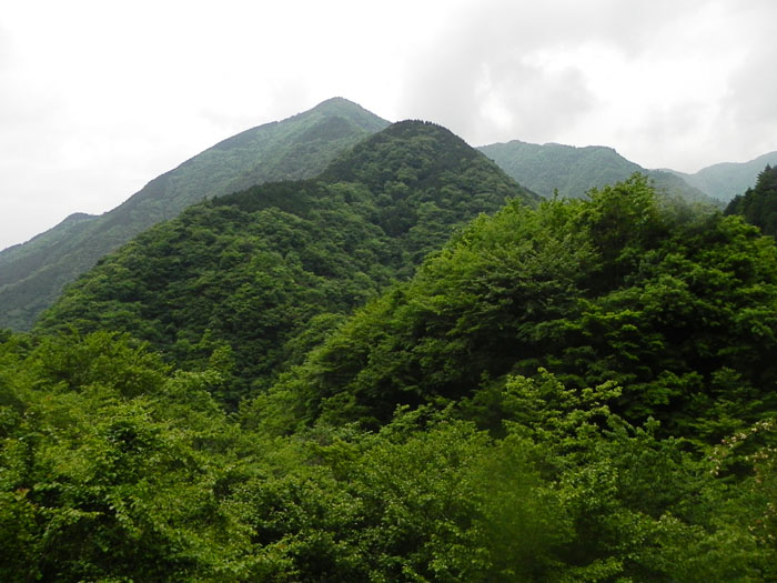 A032-3袖平山