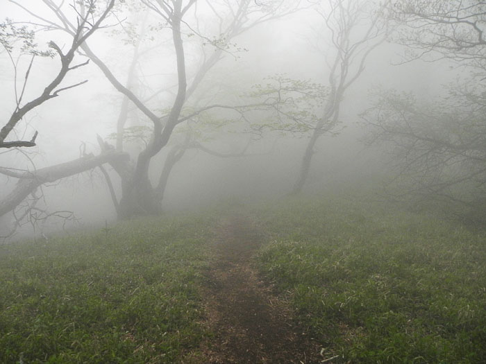 A032-12霧