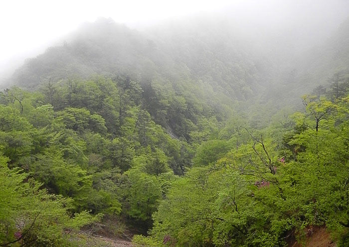 A032-22山道
