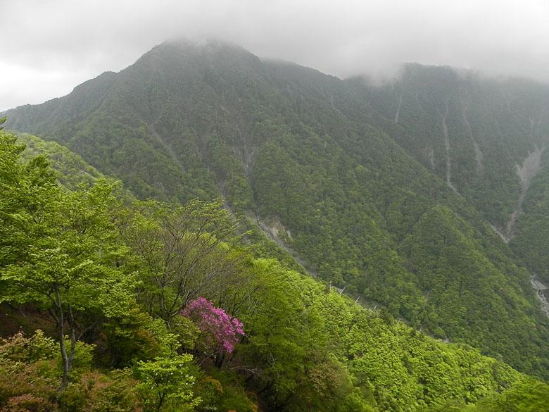 A032-32蛭ヶ岳