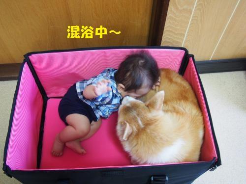 混浴BOX