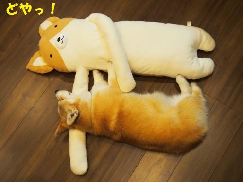 フモフモ添い寝1