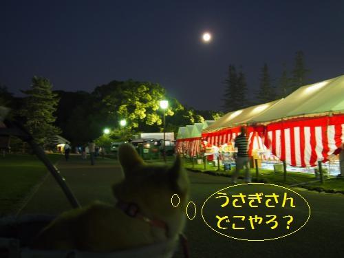 舞台裏から月見る節ちん