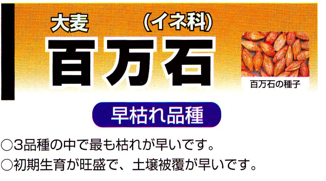 hyakumangoku.jpg
