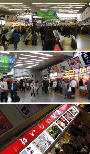 小田原駅、後藤商事、箱根鳥めし2