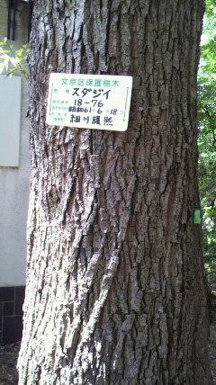 moblog_c09d354c.jpg