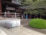 140329_chiparu.jpg