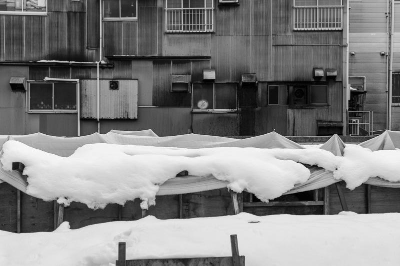 20140323_snow-08.jpg
