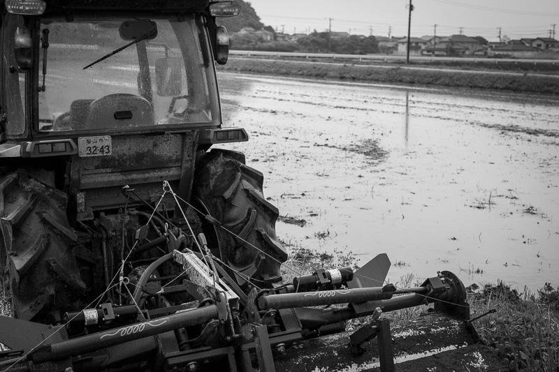 20140525_rainny-days-04.jpg