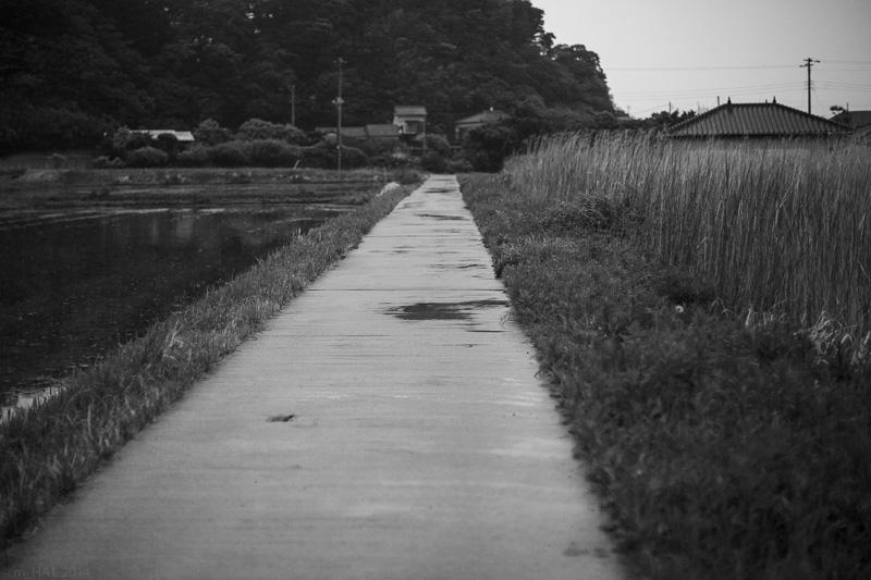 20140525_rainny-days-06.jpg