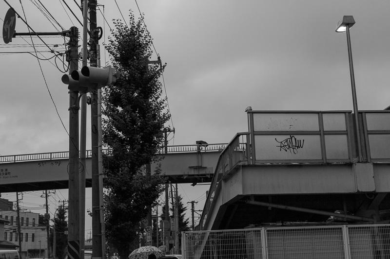 20140720_rainydays-10.jpg