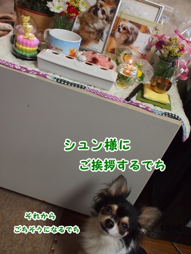 P8141425-1.jpg