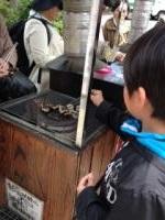鎌倉 山安 試食