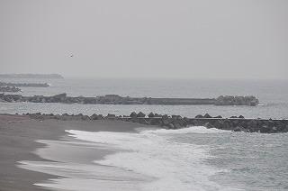 s-DSC_7272.jpg