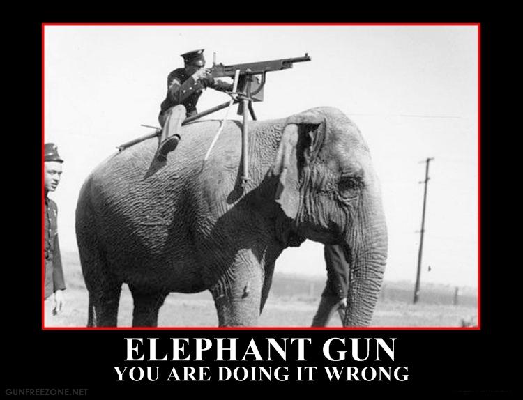 elephant-gun1.jpg