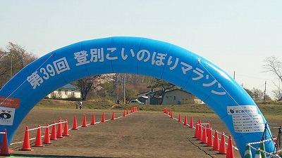 こいのぼり20140511-2