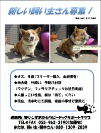 2014-3-13satooya_201403210011442a3.jpg
